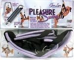 Pleasure Play Swing