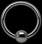 De Ultieme Halsband - The Ultimate Necklace.